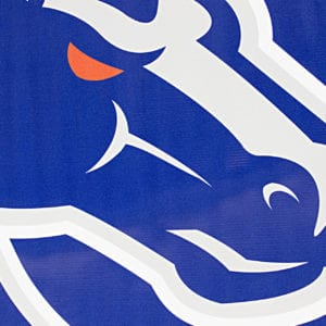 Blue & Grey Boise State Banner- Vinyl Detail Shot