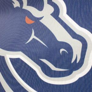 Blue & Grey Boise State Banner- Mesh Detail Shot