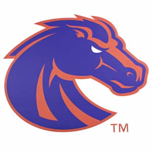 Blue & Orange Boise State Bronco Wall Graphic